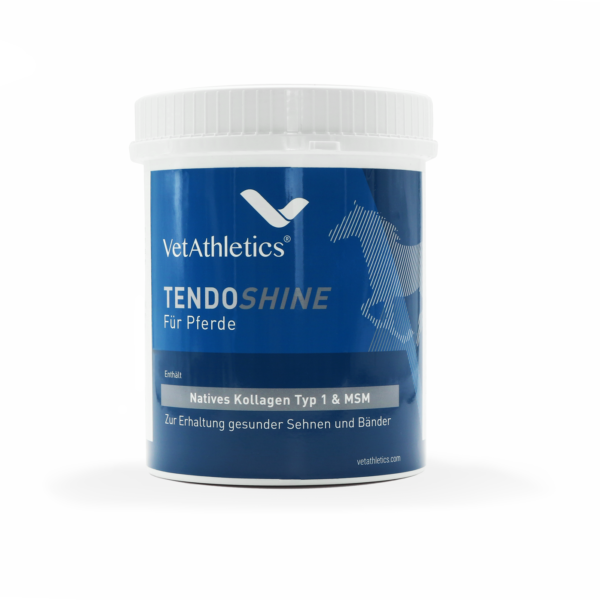 Tendoshine Produkt Pferde